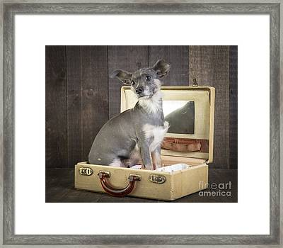 Packed And Ready To Go Framed Print by Edward Fielding