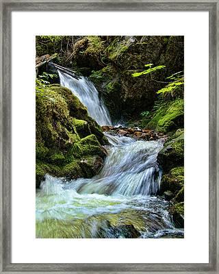 Packer Falls Vert 1 Framed Print