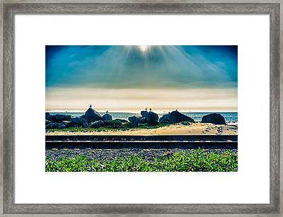 Padaro Lane  Framed Print