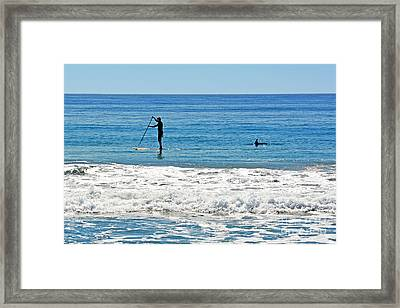 Paddle Boarder And Dolphin Framed Print by Susan Wiedmann
