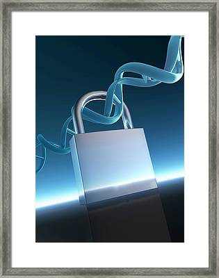 Padlock And Double Helix Framed Print by Victor Habbick Visions