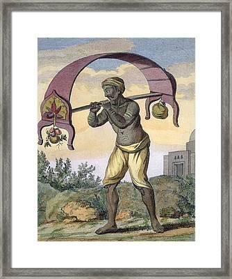 Paeni Caori , From Voyage Aux Indes Et Framed Print by Pierre Sonnerat
