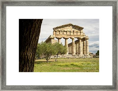 Paestum Temple Framed Print