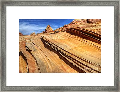 Pages From Natures Story Framed Print by Bob Christopher