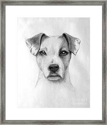 Paige Framed Print by Denise M Cassano