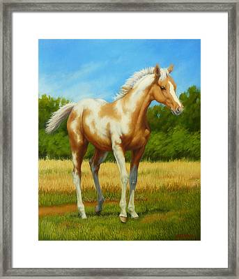 Framed Print featuring the painting Paint Foal by Margaret Stockdale