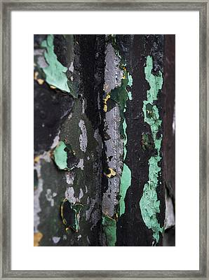 Paint Framed Print by Gretchen Lally