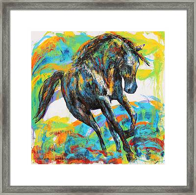 Paint Horse Framed Print