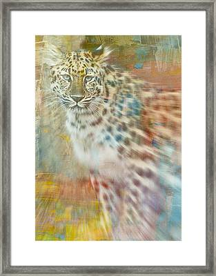 Paint Me A Cheetah Framed Print by Trish Tritz