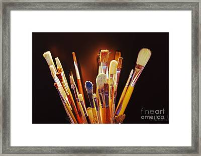 Paintbrushes Framed Print