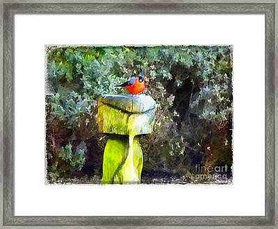 Painted Bullfinch S2 Framed Print