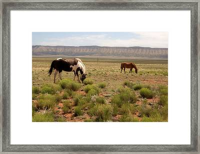 Painted Beauty Framed Print
