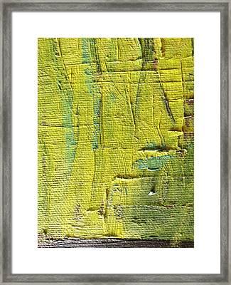 Painted Bricks Framed Print by Joanna Sabal