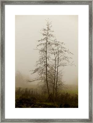 Painted By Weather Framed Print by Odd Jeppesen