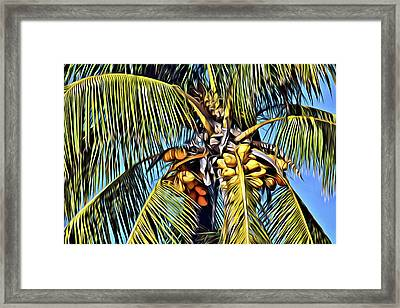 Painted Coconut Palm Framed Print by Patrick M Lynch