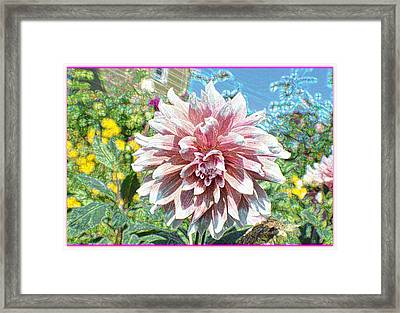 Painted Dahlia Framed Print by Sonali Gangane