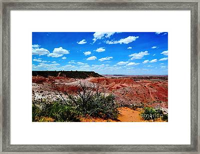 Framed Print featuring the photograph Painted Desert by Utopia Concepts