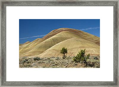 Framed Print featuring the photograph Painted Hills by Sonya Lang