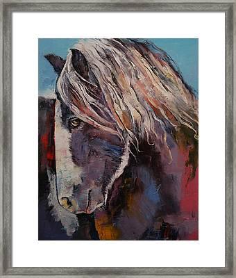 Highland Pony Framed Print