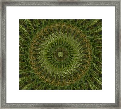 Painted Kaleidoscope 10 Framed Print