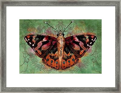 Painted Lady Framed Print by April Moen