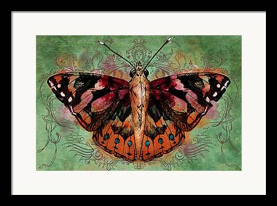 Painted Lady Butterflies Framed Prints