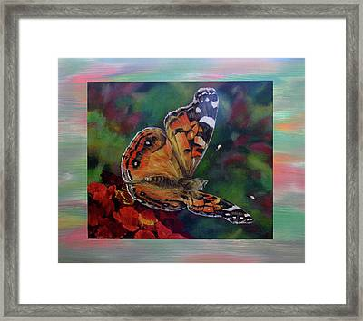 Painted Lady By Karen Peterson Framed Print by Karen  Peterson