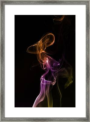 Painted Lady Framed Print by Mike Farslow