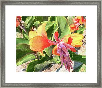Framed Print featuring the photograph Painted Lily by Larry Bishop