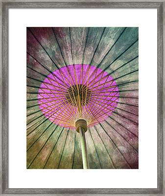 Painted Parasol  Framed Print by Stephen Norris