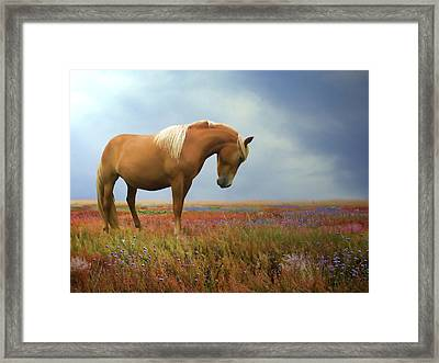 Painted Pastures Framed Print by Sharon Lisa Clarke