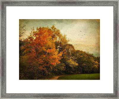 Painted Path Framed Print