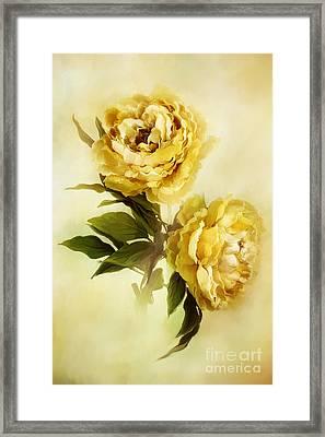 Painted Peonies Framed Print