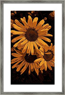 Painted Petals Framed Print by Constance Carlsen