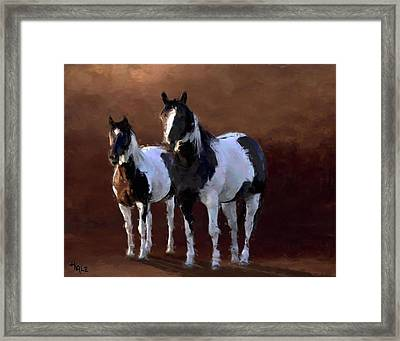 Painted Ponies Framed Print by Roger D Hale
