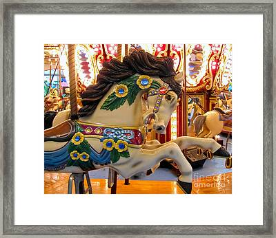 Painted Pony - Roam Framed Print