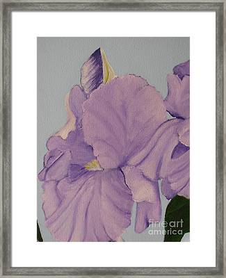 Framed Print featuring the photograph Painted Purple Irises by Margaret Newcomb