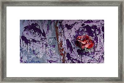 Painted Rose   #5695 Framed Print