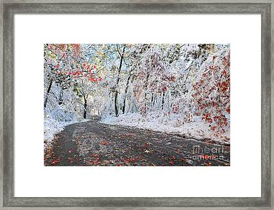 Painted Snow Framed Print