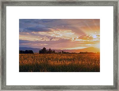 Painted Sunset Framed Print by Dana Moyer