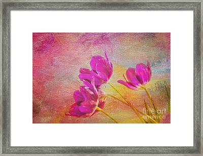 Painted Tulips Framed Print by Bob and Nancy Kendrick