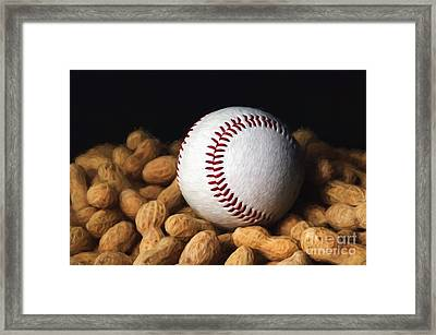 Painterly Baseball And Peanuts Framed Print by Andee Design