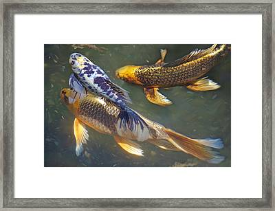Painterly Fishpond Framed Print