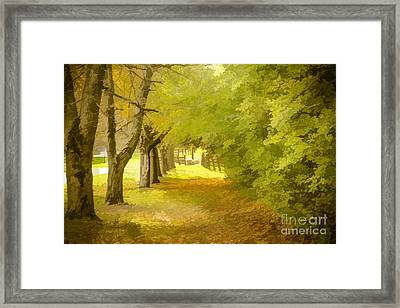 Painterly Pathway Framed Print