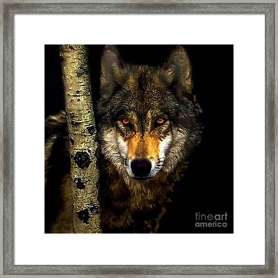 Painting ... Wolf In Aspen Grove Framed Print by Bob and Nadine Johnston