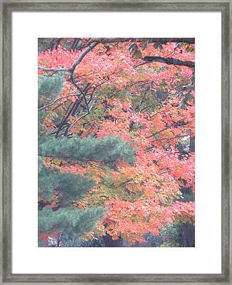 Painting Autumn Framed Print