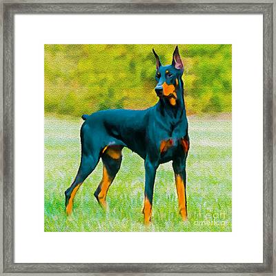Painting Doberman Pincher Framed Print by Bob and Nadine Johnston