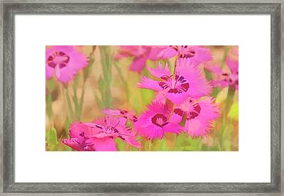 Painting Of Pink Flowers In A Garden Framed Print by Ron Harris