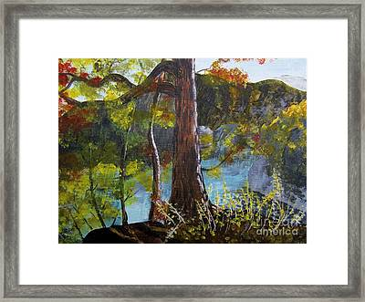 Painting Of Tree Of Golden Light Framed Print by Judy Via-Wolff
