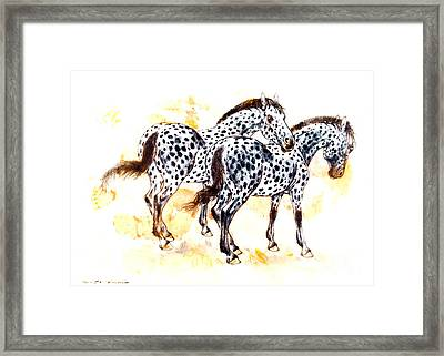 Pair Of Appaloosa Horses With Leopard Complex Framed Print by Kurt Tessmann